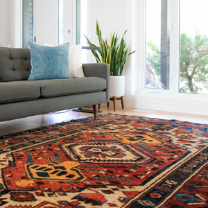 Patterned rug in living room
